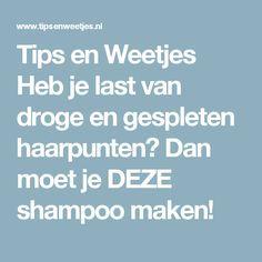 Tips en Weetjes Heb je last van droge en gespleten haarpunten? Dan moet je DEZE shampoo maken!