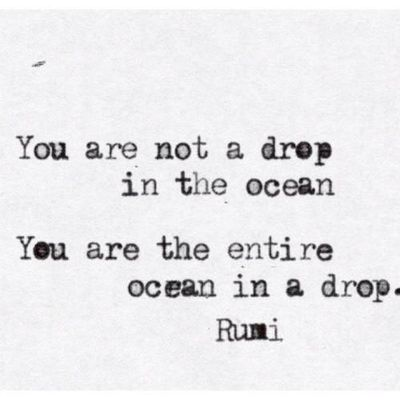 You are not a drop in the ocean…You are the entire ocean in a drop. Rumi