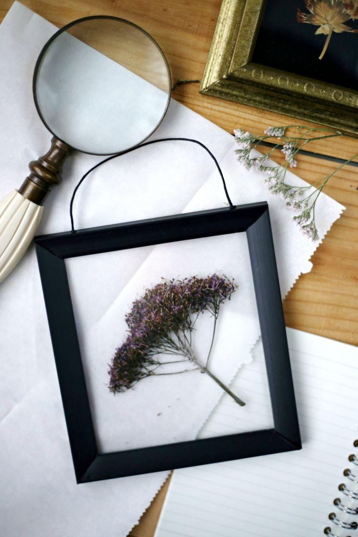 Cuadro transparente enmarcar flores prensadas