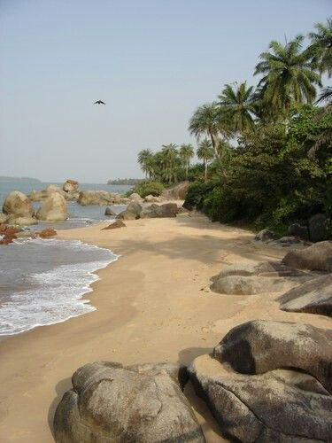"""ÎLES DE LOS, or loose islands. are a small archipelago off Conakry, the capital of Guinea. The name is derived from the Portuguese: Ilhas dos los Idolos or """"Island of the Idols"""".  The 6 islands are best known for their beaches and forested interiors. They provide protection for the port of Conakry. The group are of volcanic origin and are covered with palm trees."""