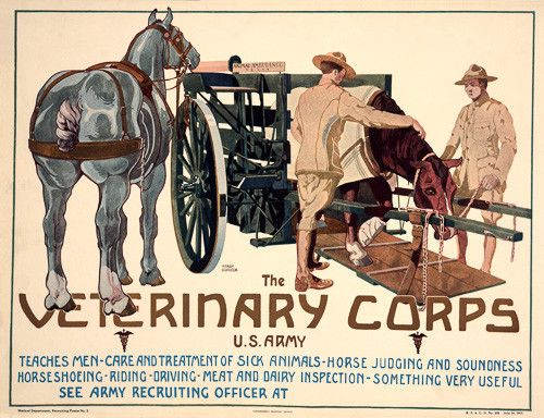"A WWI recruitment poster: ""The Army Veterinary Corps. U.S. Army. Teaches men car and treatment of sick animals, horse judging and soundness, horseshoeing, riding, driving, meat and dairy inspection, s"