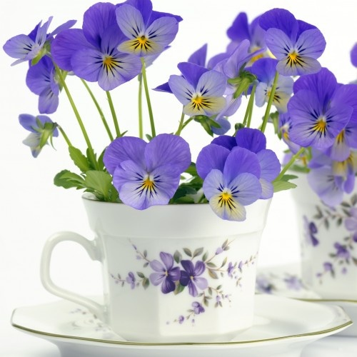 Party: Posies in a Teacup