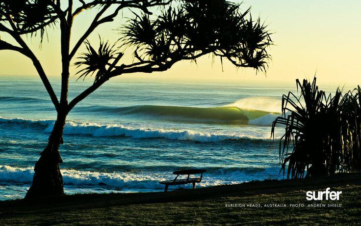 Burleigh Heads, Australia by Andrew Shields
