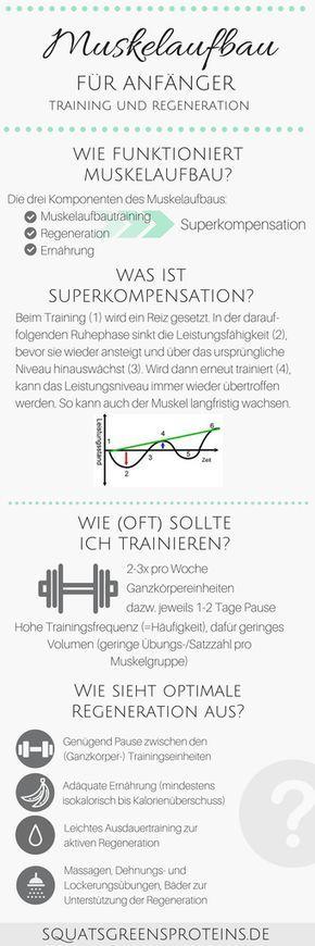 Muskelaufbautraining und Regeneration für Anfänger – Muskelaufbau für Anfänger (1 – Fritz Weckenmann