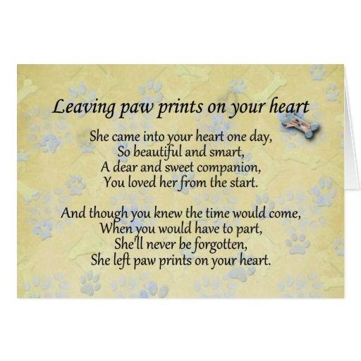 sympathy for loss of pet | Sympathy Quotes Loss Of Pet. QuotesGram