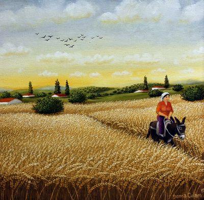 Crop Fields by Sema Culam