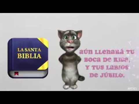 gato tom feliz cumpleaños pin o whatsapp - YouTube