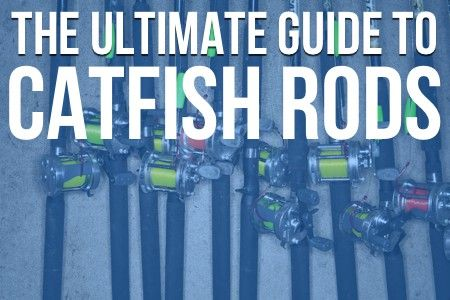 The Ultimate Guide To Catfish Rods. Everything you ever needed to know about catfish rods for blue, channel and flathead catfish.