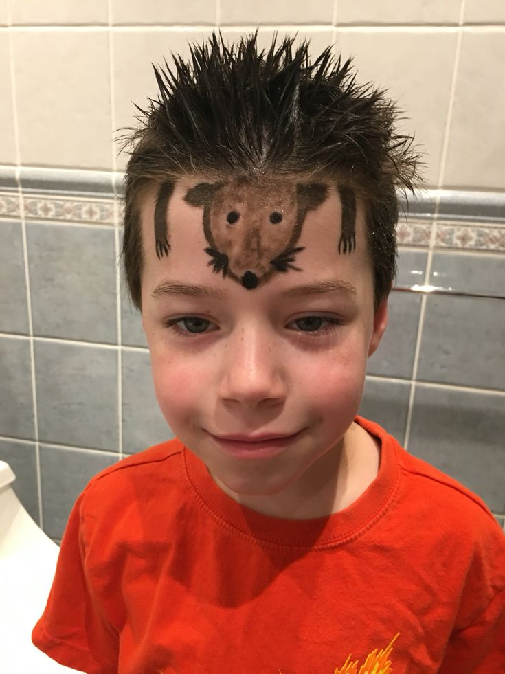Crazy hair day for boys. Hedgehog spikes