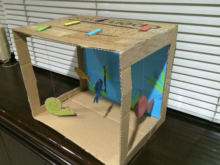 DIY Cardboard Box Aquarium