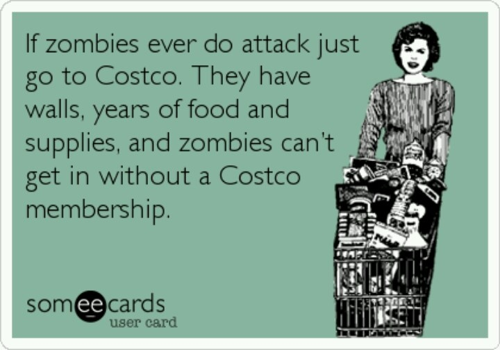 Costco Stock Quote Stunning 24 Best Costco Images On Pinterest  Costco Ha Ha And Dating