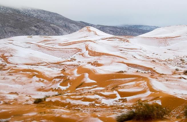 """Salju turun di Sahara untuk pertama kalinya dalam 40 tahun  ALJAZAIR (Arrahmah.com) - Seorang fotografer amatir menangkap gambar salju yang begitu jarang turun di gurun pasir di pegunungan Atlas Aljazair utara lansir WB pada Kamis (23/12/2016).  Karim Bouchetata mengambil foto salju yang hanya terlihat sekitar satu hari di dekat kota Ain Sefra di tepi padang gurun.  """"Semua orang terpana melihat salju yang jatuh di padang pasir itu adalah suatu kejadian langka"""" kata Bouchetata.  Salju…"""