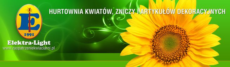 http://www.sklep.elektra-light.pl/