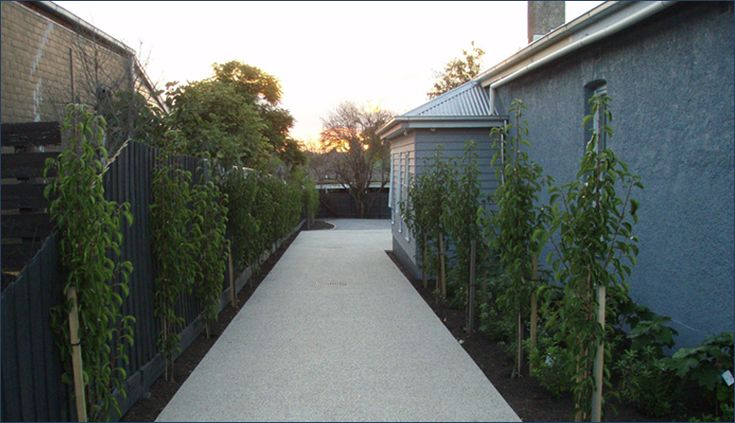 Narrow Entryway Landscaping : Best images about garden on pinterest gardens built