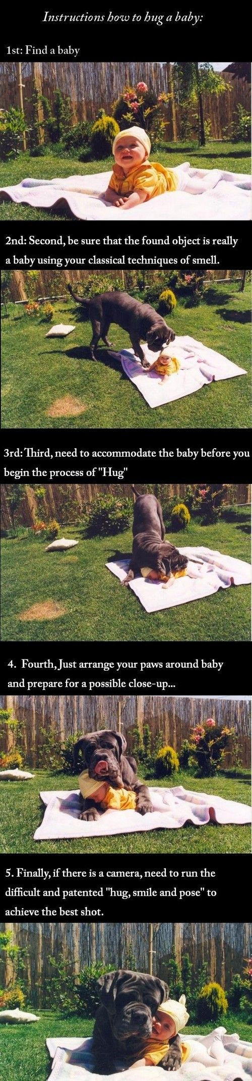 how to hug a babyStuff, Hug, Awwwwww Lolzzz, Funny, Adorable, Baby, Smile, Big Dogs, Animal