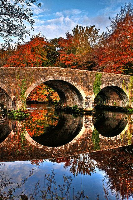 "Beautifully built, rustic stone bridge...over a ""Smooth as Glass"" Fall river, Brannockstown, Kildare, Ireland...during a Gorgeous Fall"