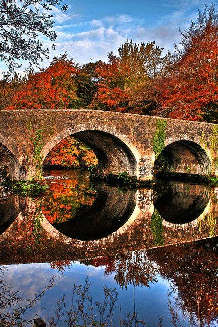 Fall river,Brannockstown, Kildare,Ireland