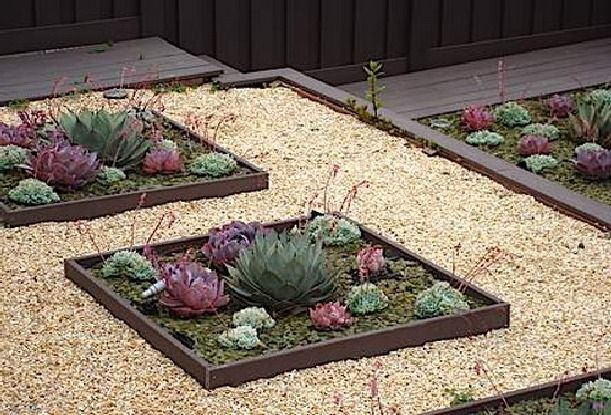 Modern succulent gardens with small rock gravel