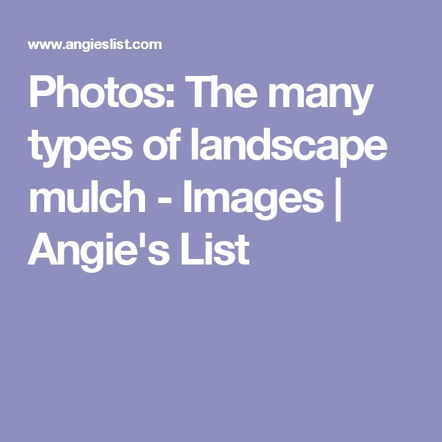 Photos: The many types of landscape mulch - Images | Angie's List