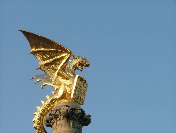 Den Bosch; Dragon