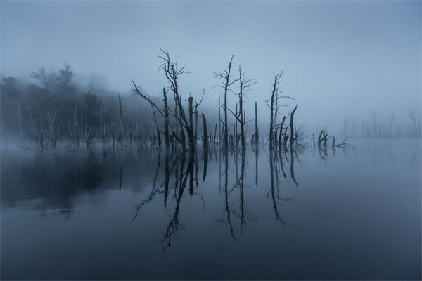 This is where our reclaimed timber originates... the remote (and beautiful) Tasmanian waters.