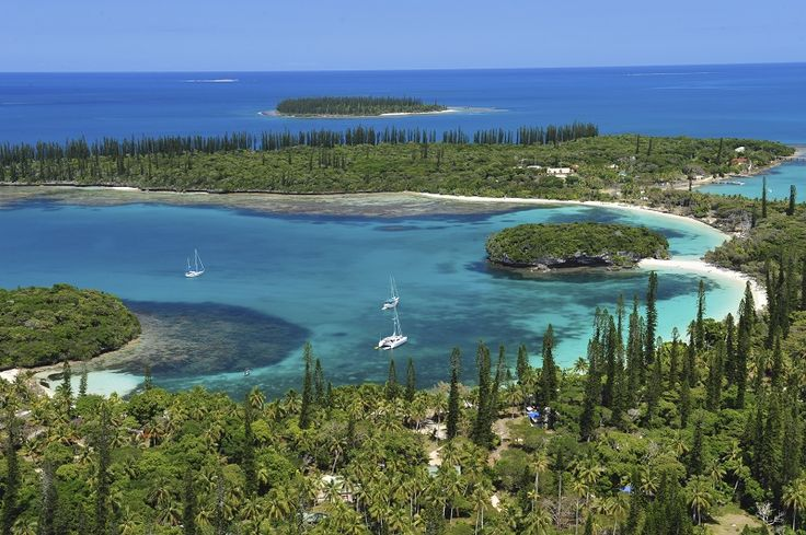 the beautiful isle of pines new caledonia beach. Black Bedroom Furniture Sets. Home Design Ideas