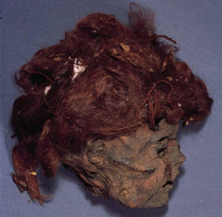 Some Bog Bodies Are Just Decapitated Heads