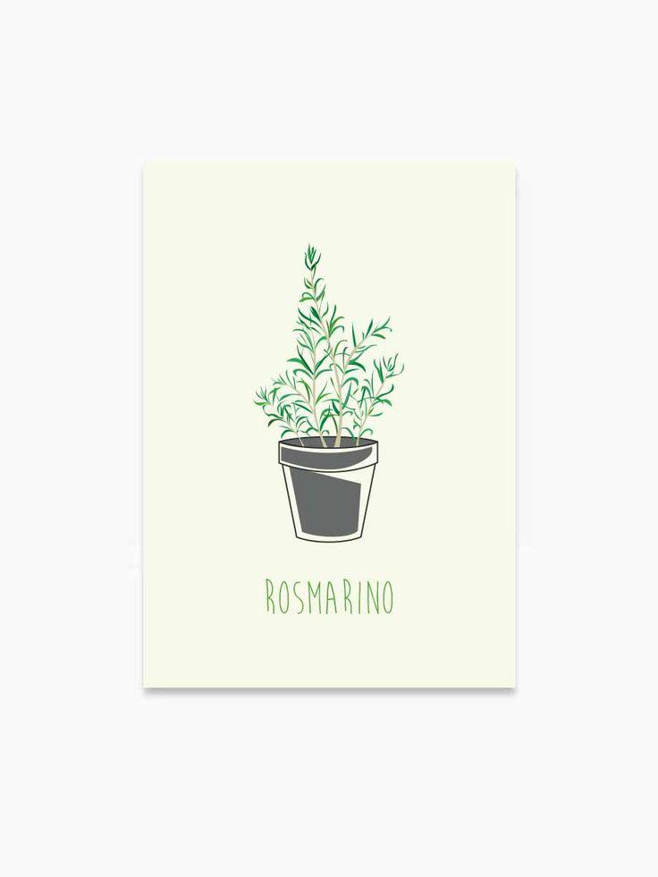 little-rome-italiaanse-posters-italie-kruiden-herbs-rosmarino-rozemarijn-keuken-wanddecoratie