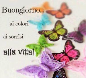 Buongiorno ai colori ai sorrisi alla vita ~ Il Magico Mondo dei Sogni