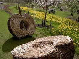 Image result for willow vegetables