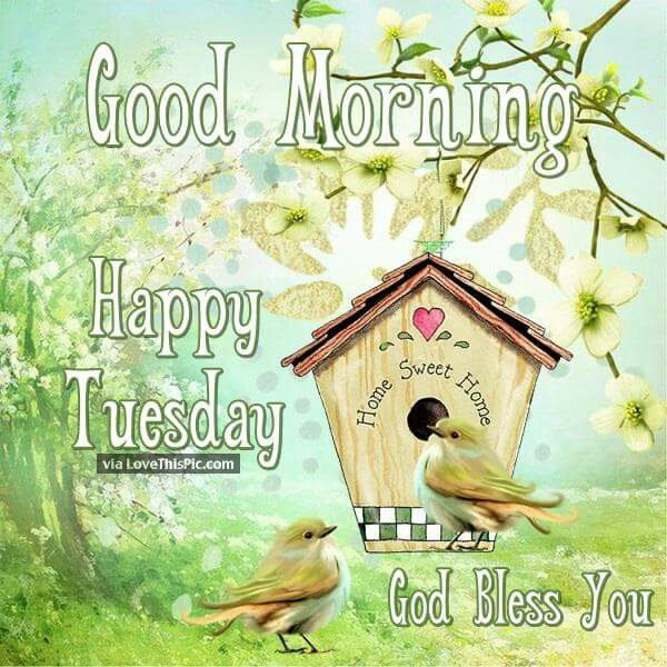 God Bless You Good Morning Happy Tuesday
