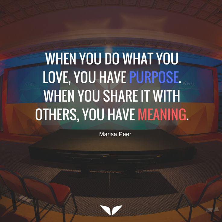 Purpose or Meaning?