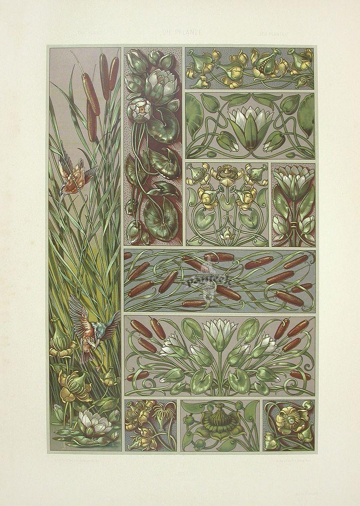 Anton Seder (1850-1916), Die Pflanze in Kunst und Gewerbe, 1887, water plants