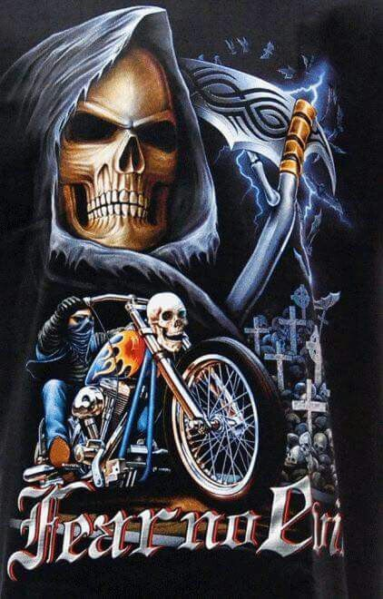 Skulls | Skulls | Skull art, Harley davidson art, Skull ...