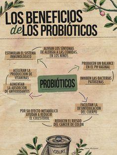 Beneficios para la salud de los probióticos.