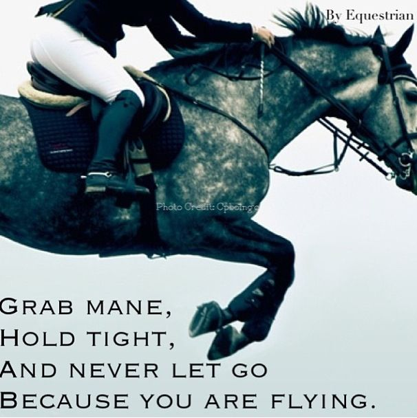 """Grab mane, hold tight, and never let go because you are flying."""