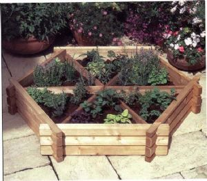 Herb wheel | Medium herb Wheel | garden Planter | Wooden planters