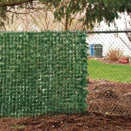 Fence ivy instantly block an ugly view the great for Fence screening solutions