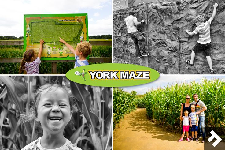 We managed to rack up 14,000 steps on our day out to York Maze. If you're looking for a family day out this summer, we really can't recommend York Maze enough.