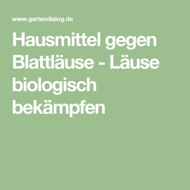 Hausmittel gegen Blattläuse - Läuse biologisch bekämpfen