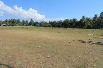 Tanah yang dijual berada di Kelurahan Oebufu Kec. Oebobo, berjarak +/- 200m dari Jl. Perintis Kemerdekaan dan +/- 400m dari Jl. Souverdi. Tanah rata, mudah diakses dan berada tidak jauh dari Kampus.  Peminat serius tanpa perantara.