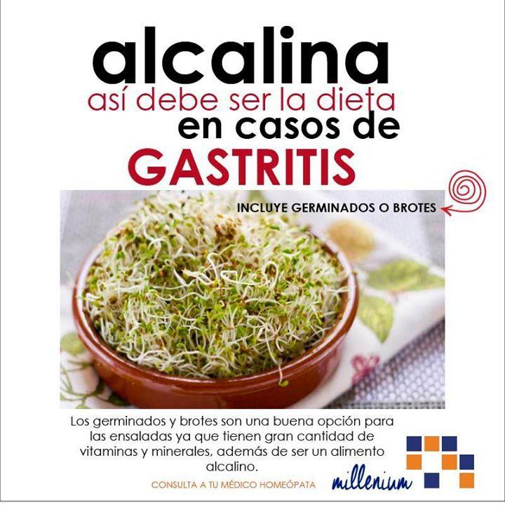 Los germinados son excelentes alimentos para complementar una dieta en contra de la acidez y gastritis.