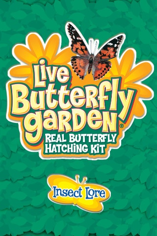 Live Butterfly Garden By Insect Lore