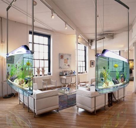 138 Best AQUARIUMS/FISH TANKS Images On Pinterest | Aquarium Ideas, Fish  Aquariums And Tanked Aquariums