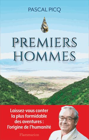 Premiers hommes / Pascal Picq. http://scd.summon.serialssolutions.com/search?s.q=isbn:(9782081348141)