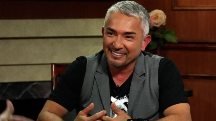 March 2016 / Dog Whisperer #CesarMillan under investigation for animal abuse after an #Cesar911 episode.  / Dog Whisperer Cesar Millan under investigation by the L.A. County Animal Control after an episode of 'Cesar 911'. http://www.ora.tv/larrykingnow/article/2016/3/11/dog-whisperer-under-animal-cruelty-investigation #CesarMillan #Dog #Dogs #Animals