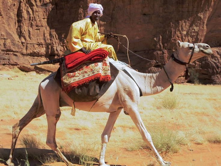This Toubou man at Tokou in the Ennedi Mountains of northeastern Chad, Central Africa, gets around by camel.