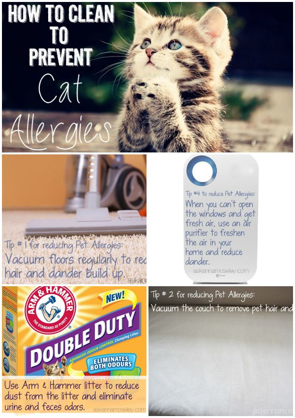 How to clean to prevent allergies in your home - Ask Anna
