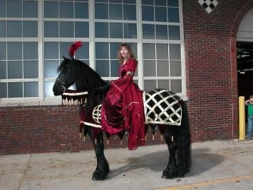 Beautiful medieval horse and rider costume