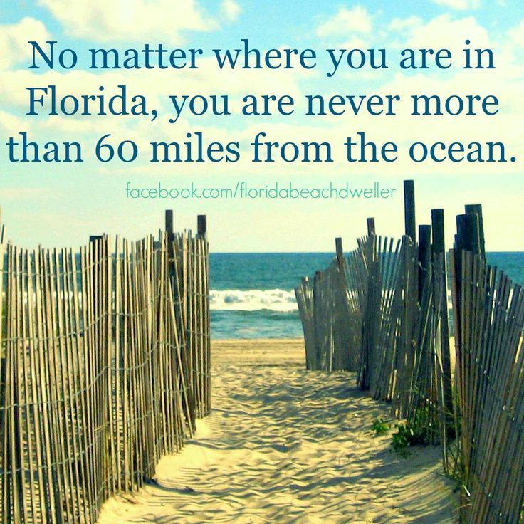 Join the FLORIDA BEACH DWELLER on FB: https://www.facebook.com/floridabeachdweller